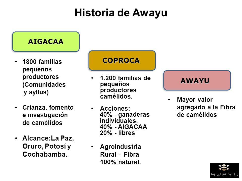 Historia de Awayu AIGACAA AWAYU 1800 familias pequeños productores (Comunidades y ayllus) Crianza, fomento e investigación de camélidos Alcance:La Paz