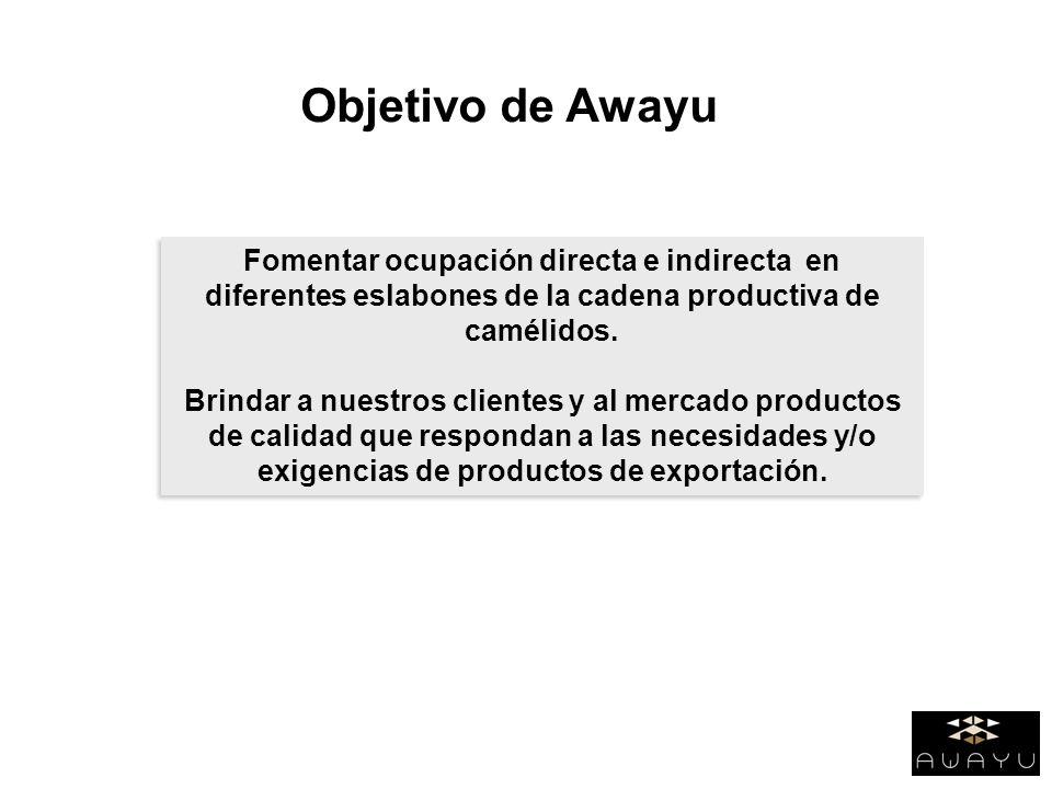 Fomentar ocupación directa e indirecta en diferentes eslabones de la cadena productiva de camélidos. Brindar a nuestros clientes y al mercado producto