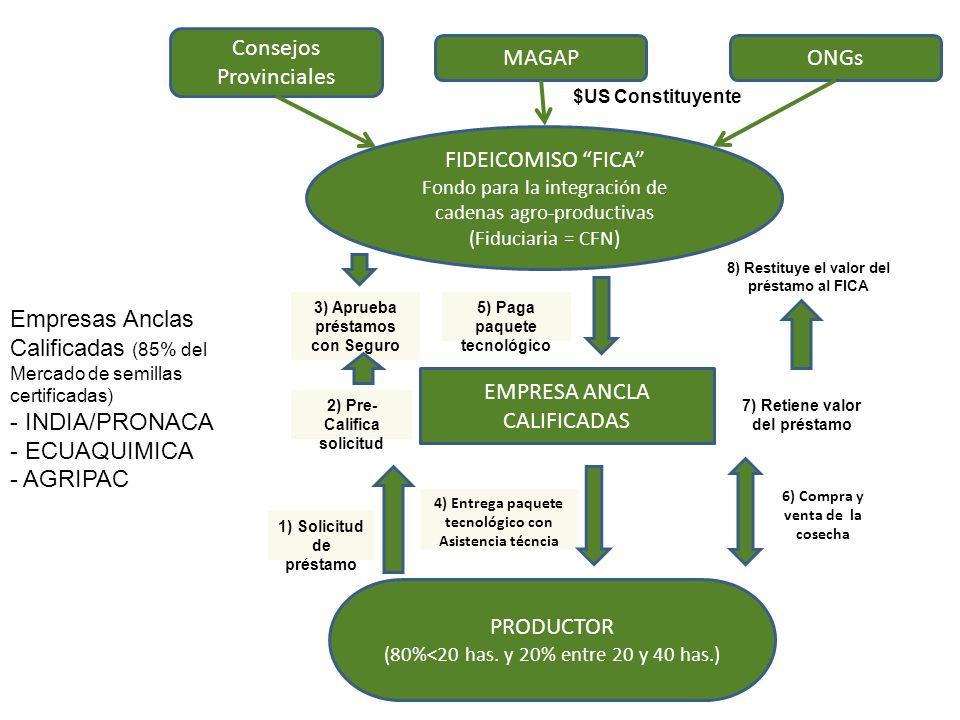 MAGAP FIDEICOMISO FICA Fondo para la integración de cadenas agro-productivas (Fiduciaria = CFN) EMPRESA ANCLA CALIFICADAS PRODUCTOR (80%<20 has. y 20%