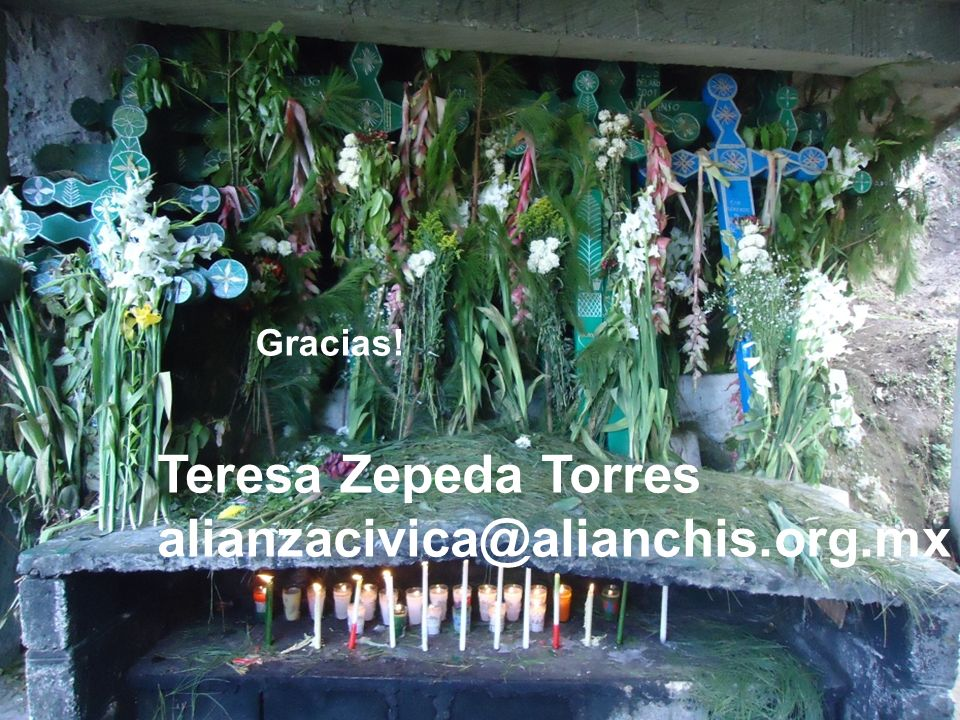 Teresa Zepeda Torres alianzacivica@alianchis.org.mx Gracias!