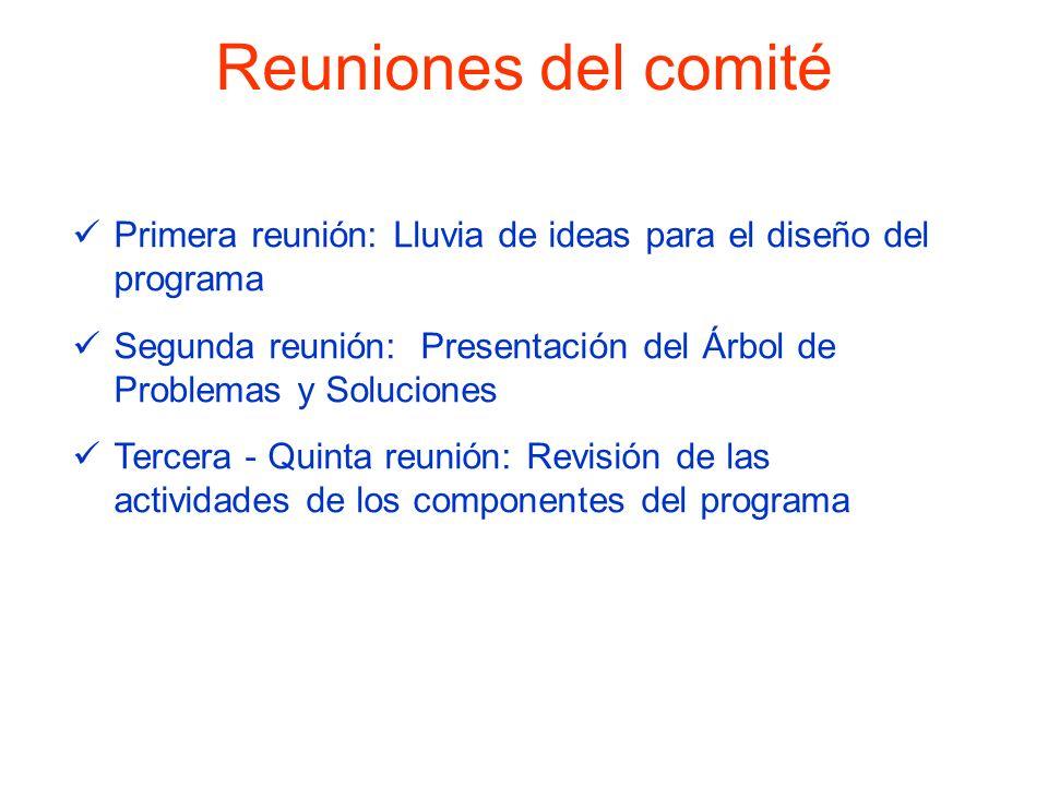 Reuniones del comité Primera reunión: Lluvia de ideas para el diseño del programa Segunda reunión: Presentación del Árbol de Problemas y Soluciones Te