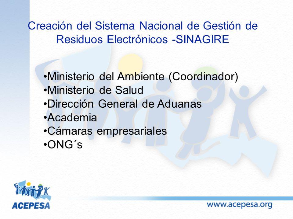 Ministerio del Ambiente (Coordinador) Ministerio de Salud Dirección General de Aduanas Academia Cámaras empresariales ONG´s Creación del Sistema Nacio