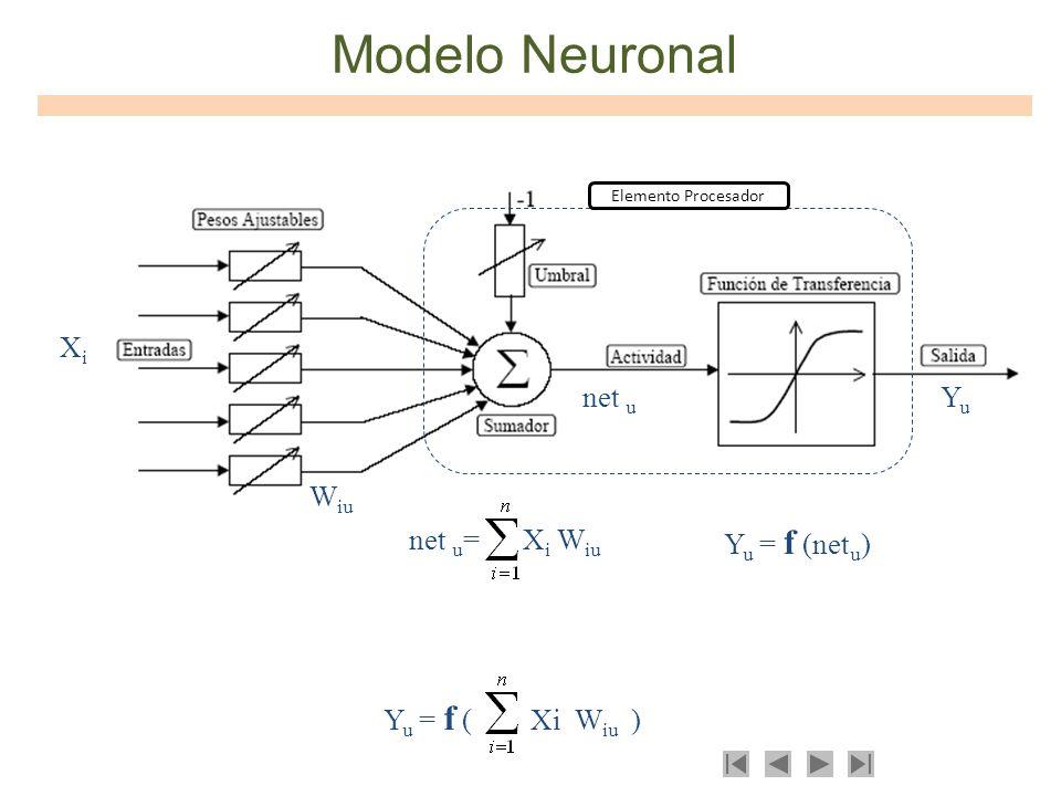 Modelo Neuronal net u = X i W iu Y u = f (net u ) Y u = f ( Xi W iu ) Elemento Procesador net u XiXi W iu YuYu