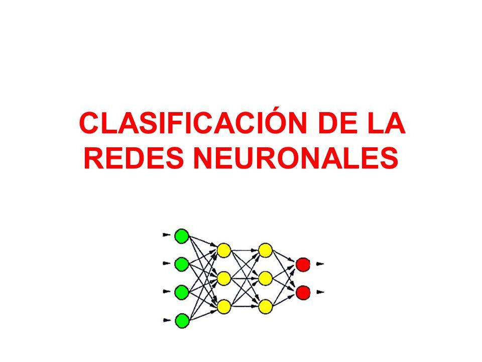 CLASIFICACIÓN DE LA REDES NEURONALES