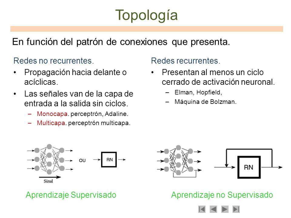 Redes no recurrentes. Propagación hacia delante o acíclicas. Las señales van de la capa de entrada a la salida sin ciclos. –Monocapa. perceptrón, Adal