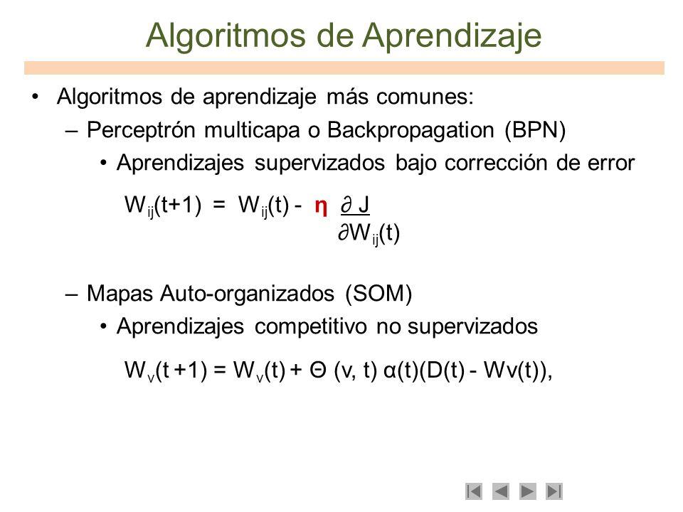 Algoritmos de Aprendizaje Algoritmos de aprendizaje más comunes: –Perceptrón multicapa o Backpropagation (BPN) Aprendizajes supervizados bajo correcci