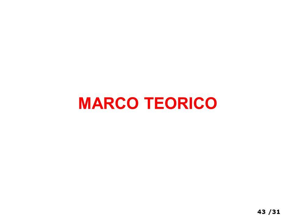 43/31 MARCO TEORICO