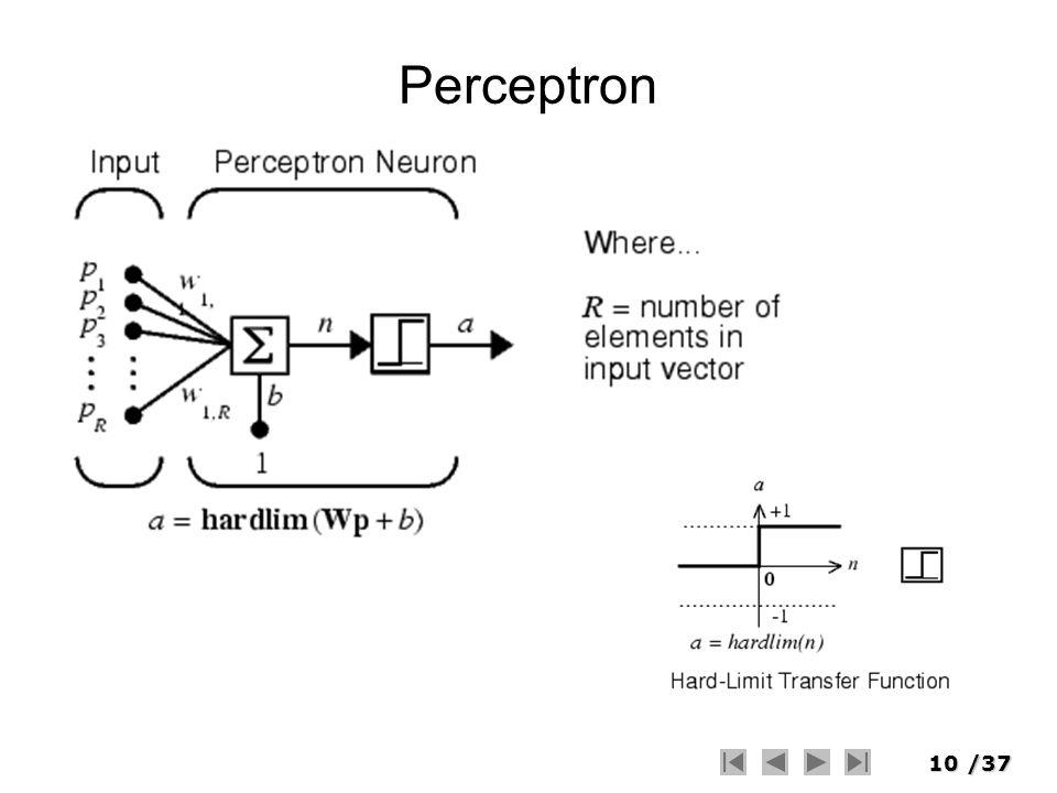 10/37 Perceptron