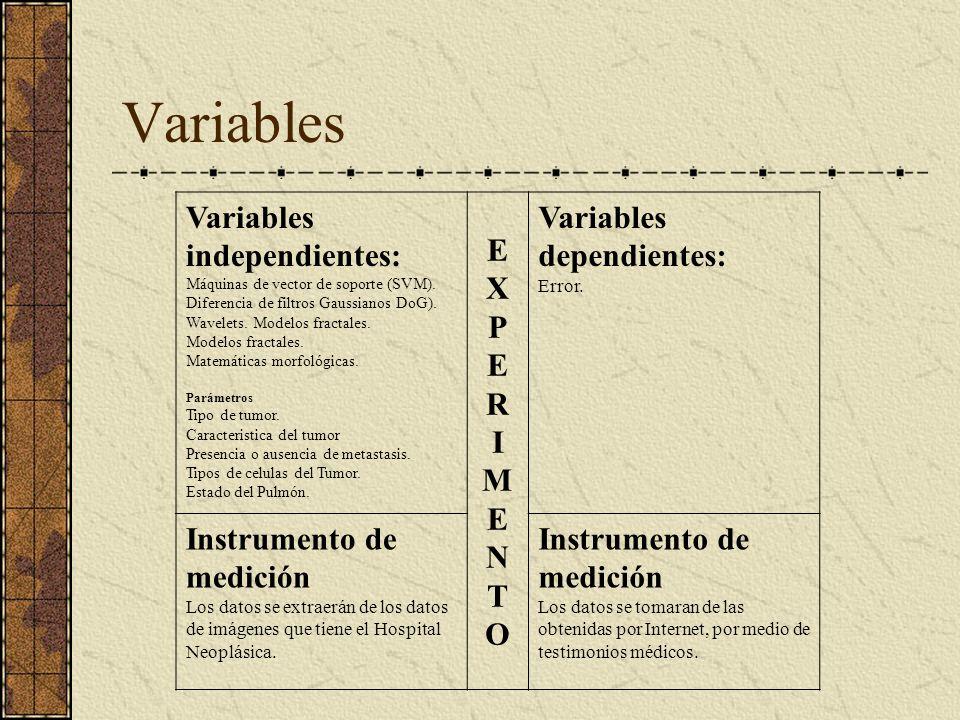 Variables Variables independientes: Máquinas de vector de soporte (SVM). Diferencia de filtros Gaussianos DoG). Wavelets. Modelos fractales. Modelos f