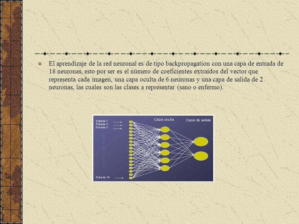 El aprendizaje de la red neuronal es de tipo backpropagation con una capa de entrada de 18 neuronas, esto por ser es el número de coeficientes extraíd