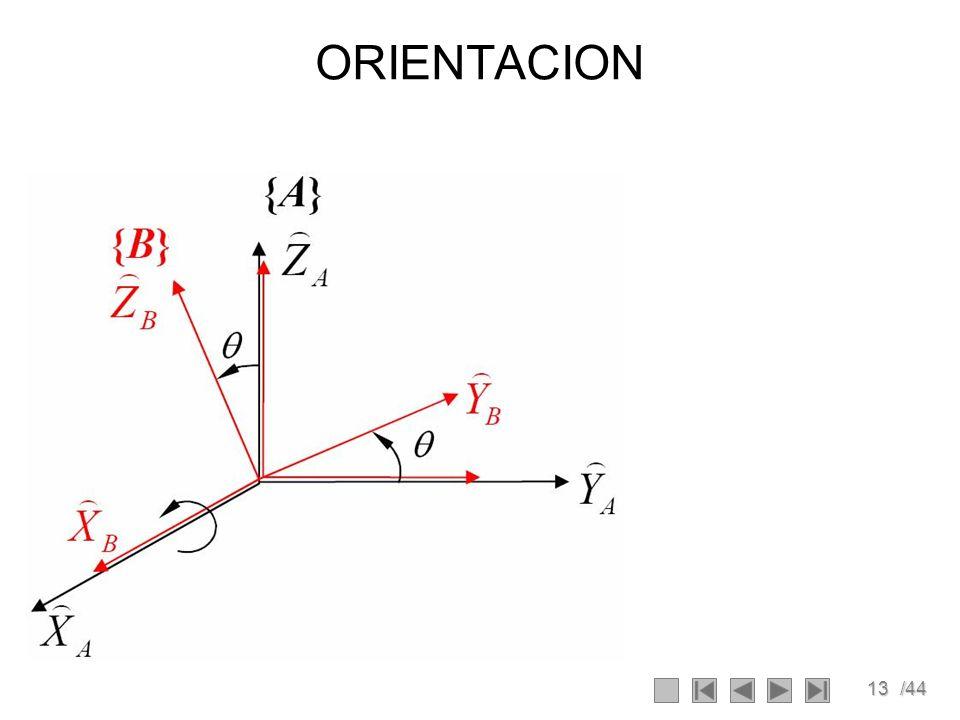 13/44 ORIENTACION