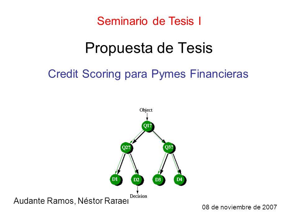 Propuesta de Tesis Audante Ramos, Néstor Rafael Seminario de Tesis I Credit Scoring para Pymes Financieras 08 de noviembre de 2007