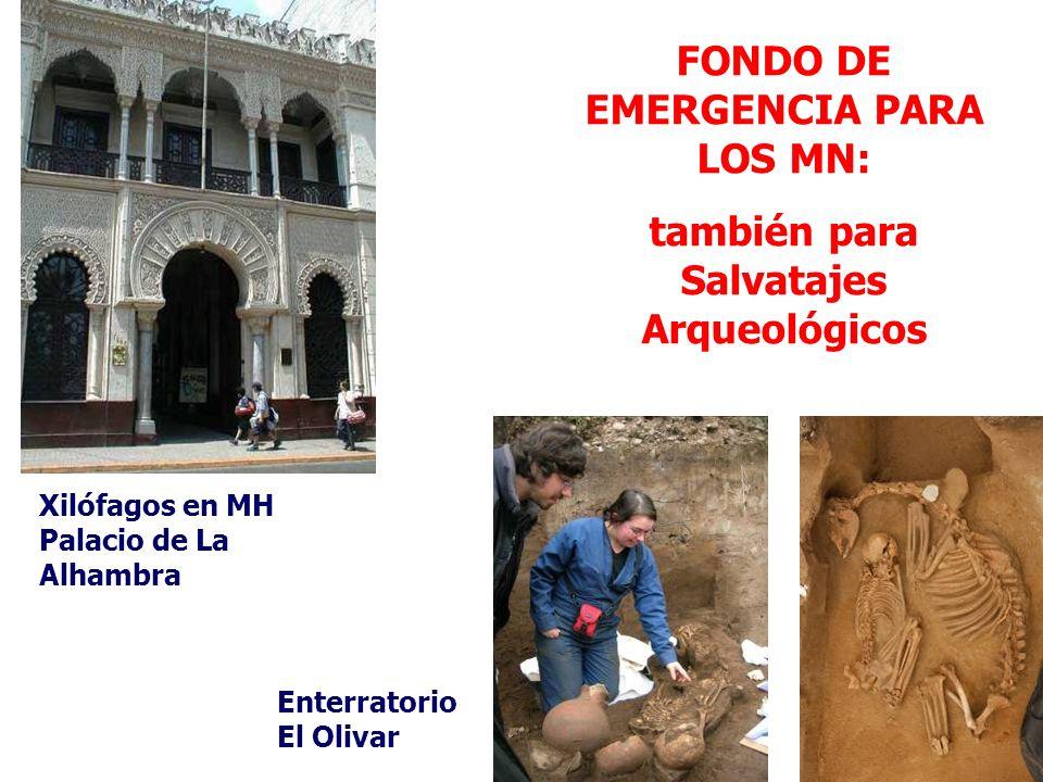 FONDO DE EMERGENCIA PARA LOS MN: también para Salvatajes Arqueológicos Xilófagos en MH Palacio de La Alhambra Enterratorio El Olivar