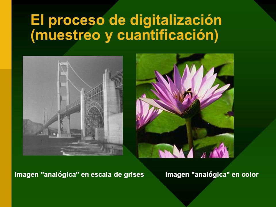 El proceso de digitalización (muestreo y cuantificación) Imagen