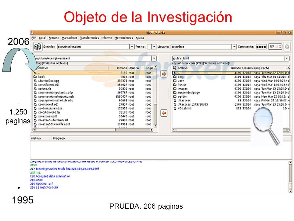 Objeto de la Investigación PRUEBA: 206 paginas REGISTROS 1,250 paginas 1995 2006