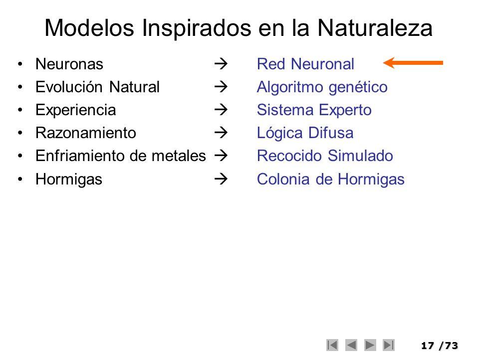 17/73 Modelos Inspirados en la Naturaleza Neuronas Red Neuronal Evolución Natural Algoritmo genético Experiencia Sistema Experto Razonamiento Lógica D