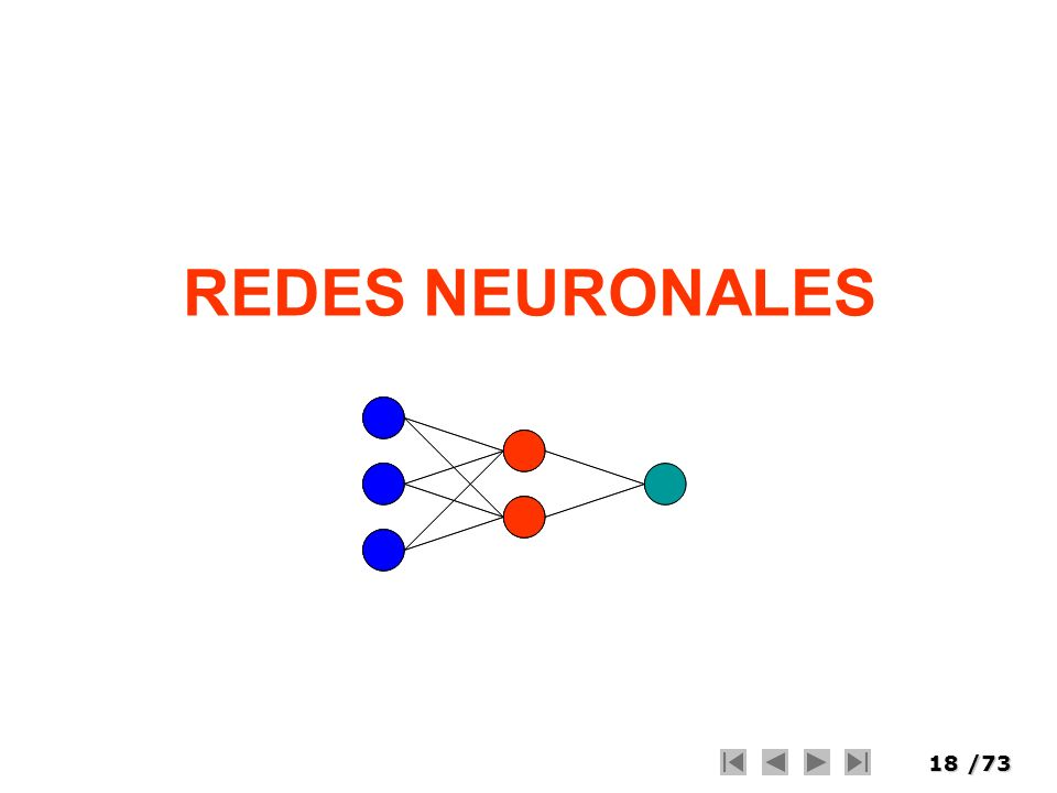 18/73 REDES NEURONALES
