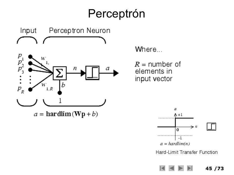 45/73 Perceptrón