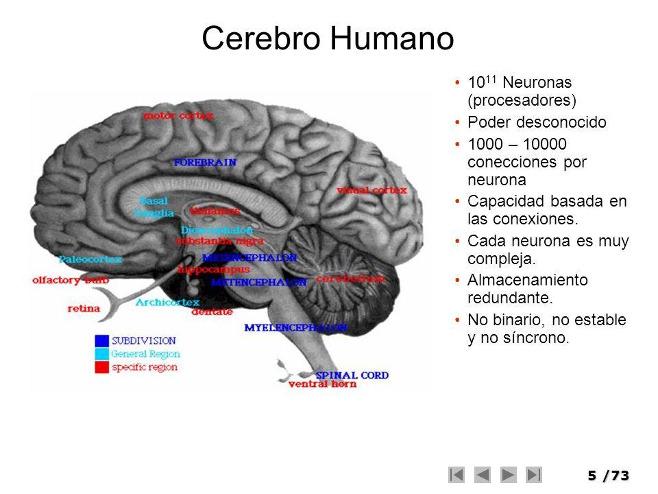 5/73 Cerebro Humano 10 11 Neuronas (procesadores) Poder desconocido 1000 – 10000 conecciones por neurona Capacidad basada en las conexiones. Cada neur