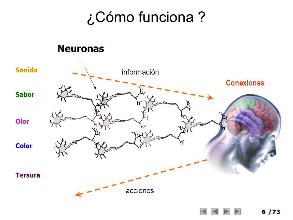 17/73 Modelos Inspirados en la Naturaleza Neuronas Red Neuronal Evolución Natural Algoritmo genético Experiencia Sistema Experto Razonamiento Lógica Difusa Enfriamiento de metales Recocido Simulado Hormigas Colonia de Hormigas