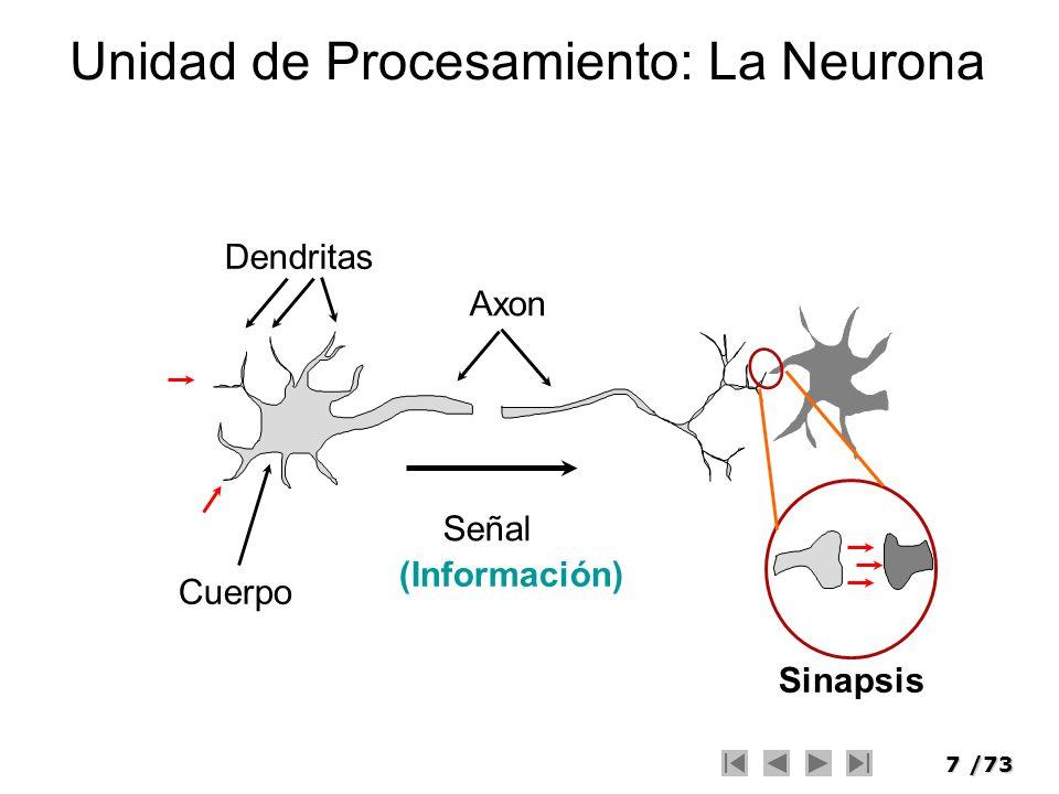 7/73 Unidad de Procesamiento: La Neurona Cuerpo Dendritas Axon Señal Sinapsis (Información)