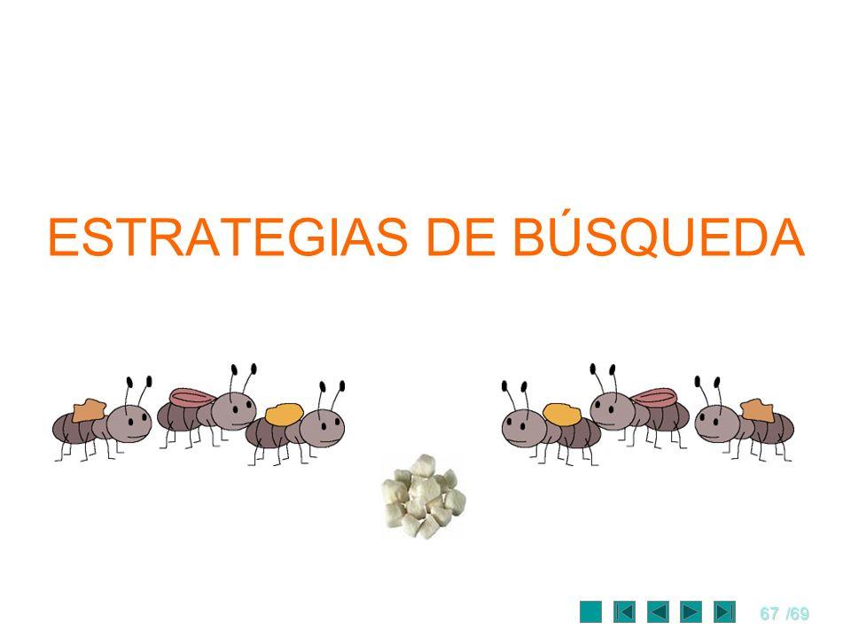 67/69 ESTRATEGIAS DE BÚSQUEDA