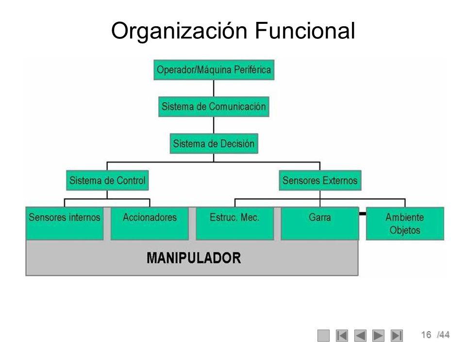 16/44 Organización Funcional
