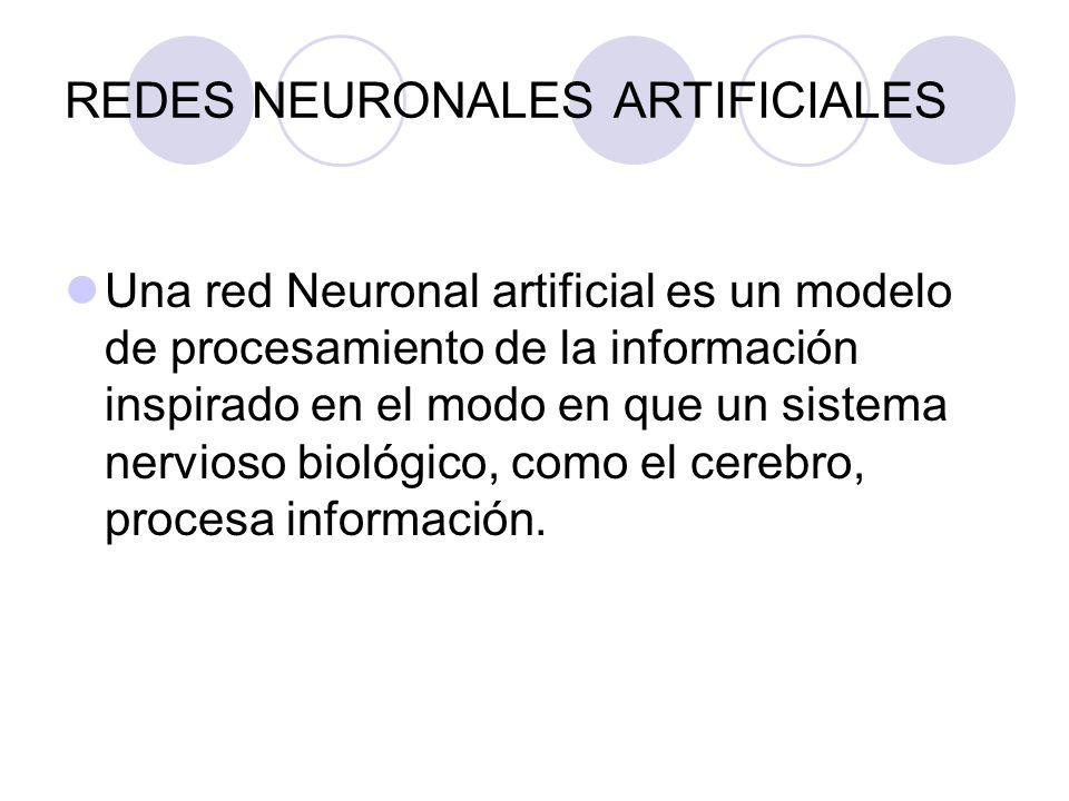 REDES NEURONALES ARTIFICIALES Una red Neuronal artificial es un modelo de procesamiento de la información inspirado en el modo en que un sistema nervi