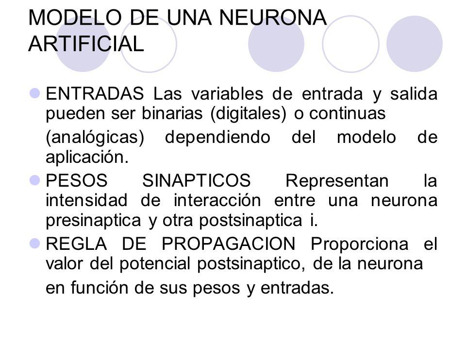 MODELO DE UNA NEURONA ARTIFICIAL ENTRADAS Las variables de entrada y salida pueden ser binarias (digitales) o continuas (analógicas) dependiendo del m