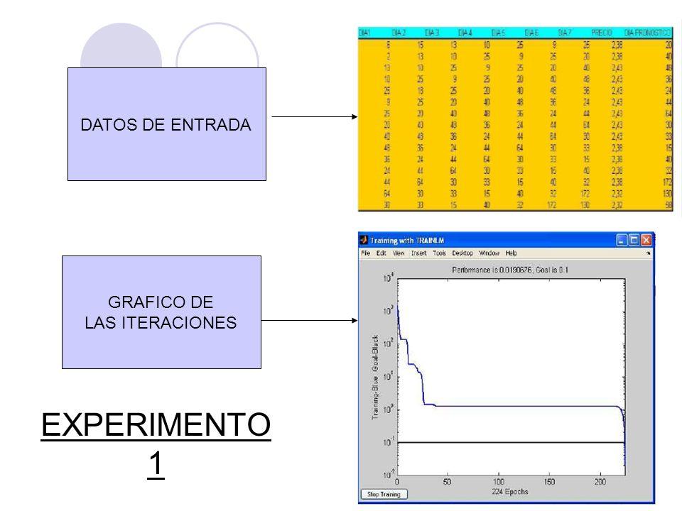 EXPERIMENTO 1 DATOS DE ENTRADA GRAFICO DE LAS ITERACIONES