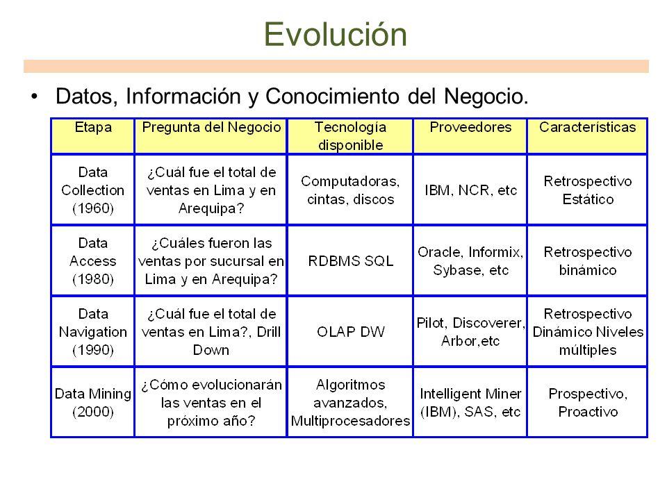Evolución Datos, Información y Conocimiento del Negocio.
