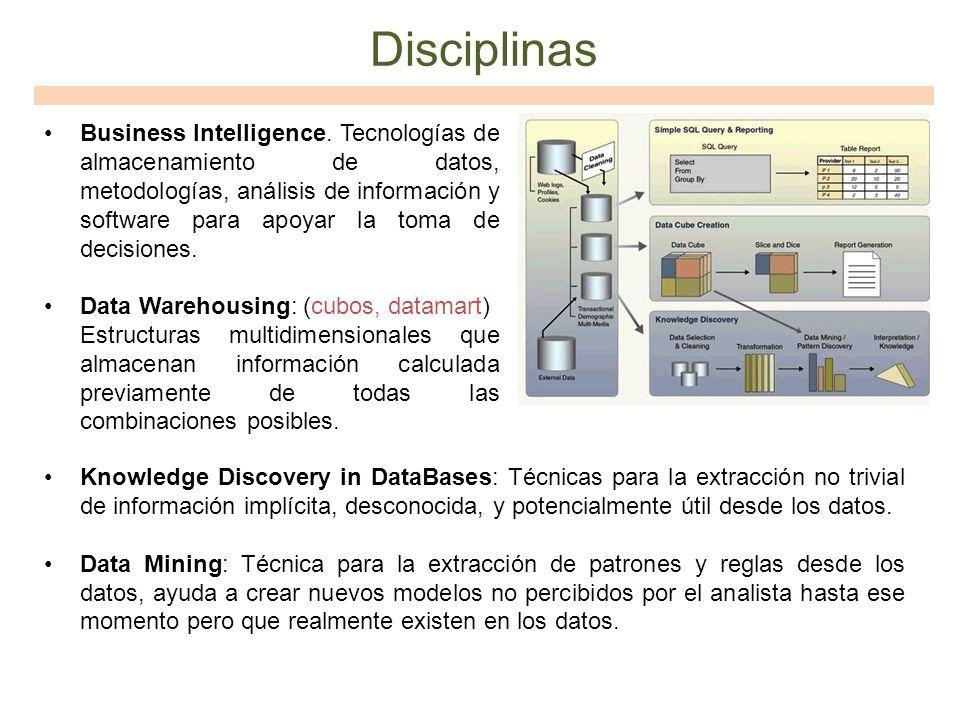 Disciplinas Business Intelligence. Tecnologías de almacenamiento de datos, metodologías, análisis de información y software para apoyar la toma de dec