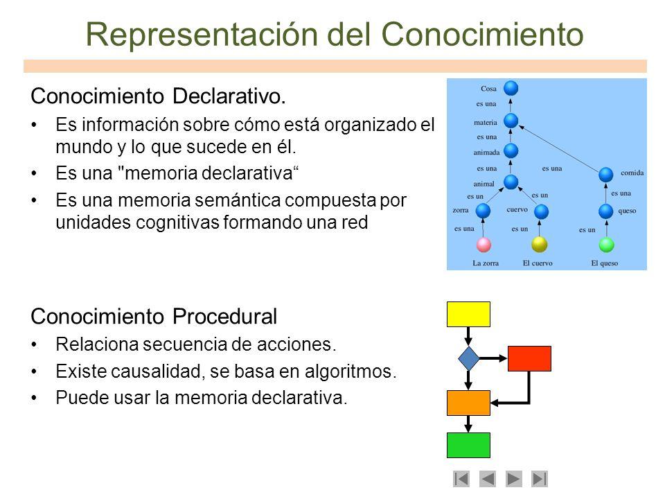 Representación del Conocimiento Conocimiento Declarativo. Es información sobre cómo está organizado el mundo y lo que sucede en él. Es una