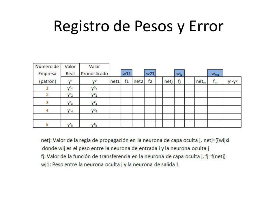 Registro de Pesos y Error