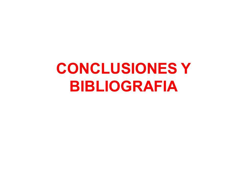 CONCLUSIONES Y BIBLIOGRAFIA