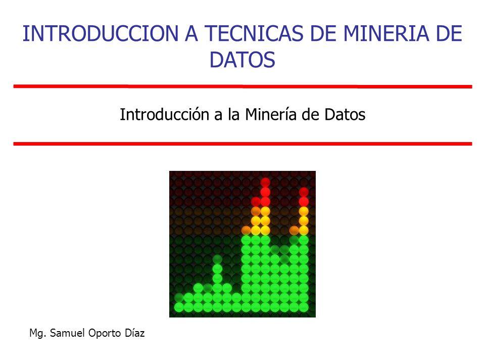 Introducción a la Minería de Datos INTRODUCCION A TECNICAS DE MINERIA DE DATOS Mg. Samuel Oporto Díaz