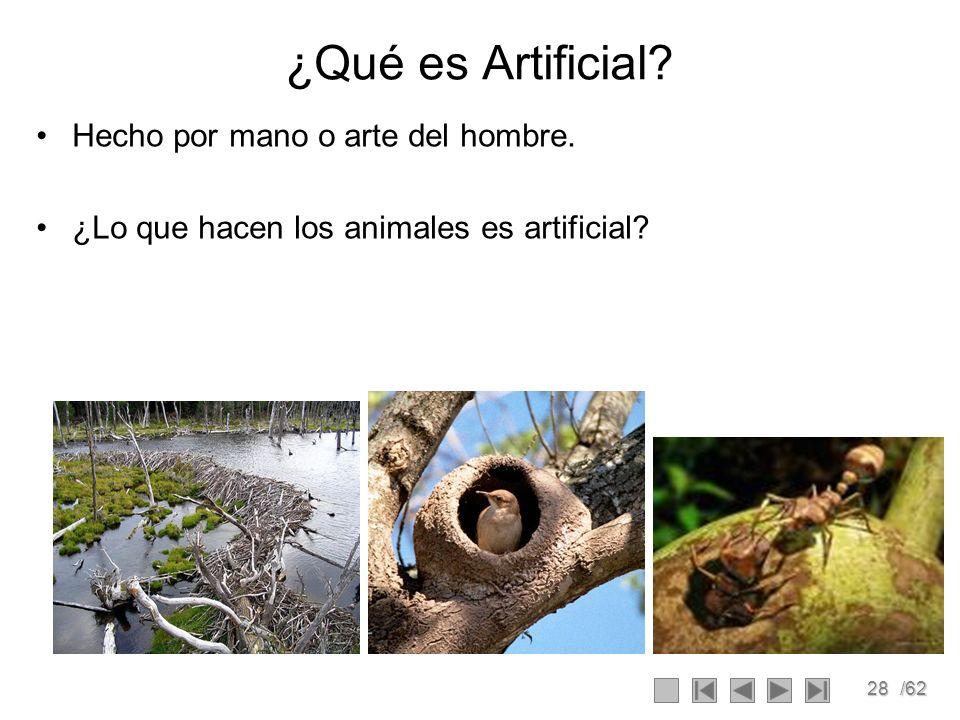 28/62 ¿Qué es Artificial? Hecho por mano o arte del hombre. ¿Lo que hacen los animales es artificial?
