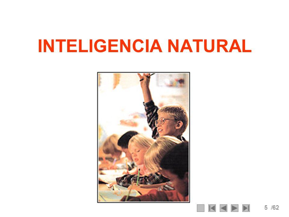 5/62 INTELIGENCIA NATURAL