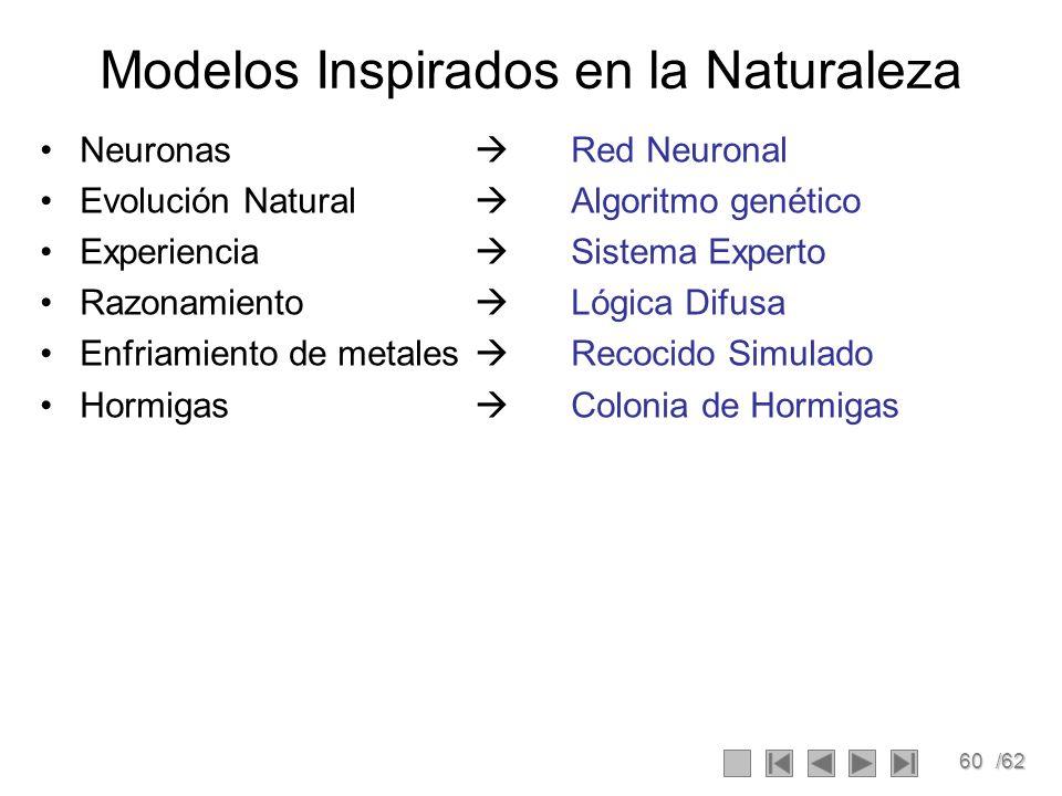 60/62 Modelos Inspirados en la Naturaleza Neuronas Red Neuronal Evolución Natural Algoritmo genético Experiencia Sistema Experto Razonamiento Lógica D