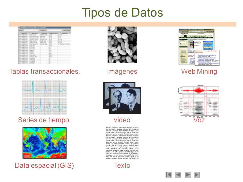 Tipos de Datos Tablas transaccionales.Imágenes videoSeries de tiempo. Texto Voz Data espacial (GIS) Web Mining