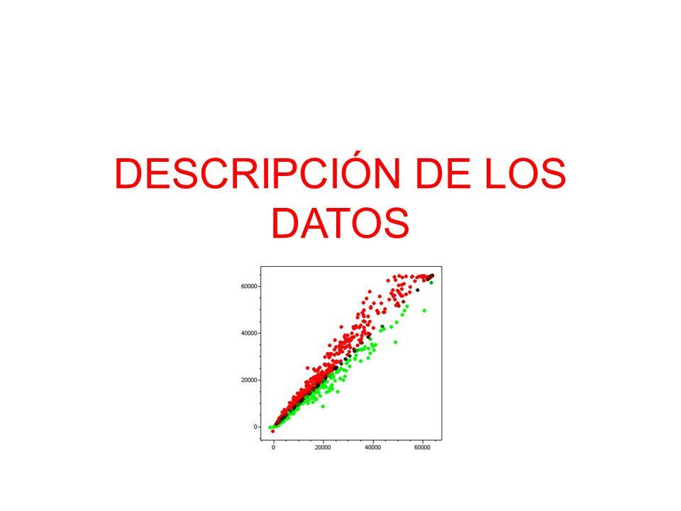 DESCRIPCIÓN DE LOS DATOS