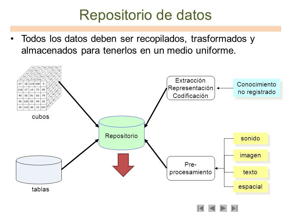 Repositorio de datos Todos los datos deben ser recopilados, trasformados y almacenados para tenerlos en un medio uniforme. texto imagen sonido espacia