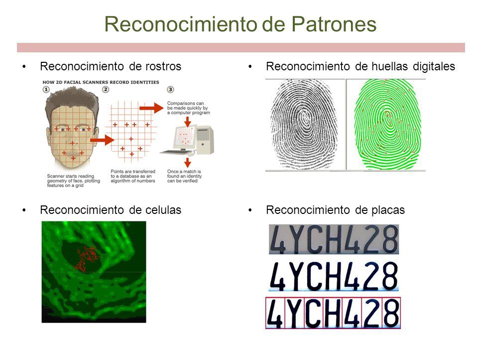 Reconocimiento de rostros Reconocimiento de celulas Reconocimiento de huellas digitales Reconocimiento de placas Reconocimiento de Patrones