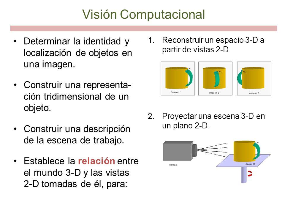Determinar la identidad y localización de objetos en una imagen. Construir una representa- ción tridimensional de un objeto. Construir una descripción