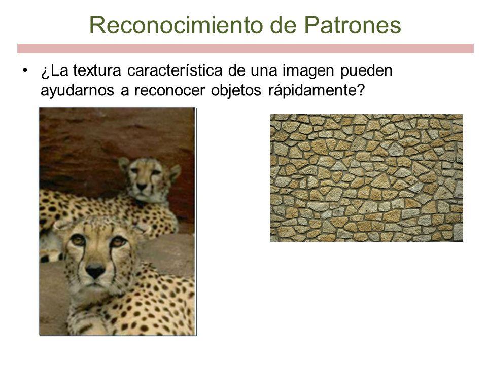Reconocimiento de Patrones ¿La textura característica de una imagen pueden ayudarnos a reconocer objetos rápidamente?