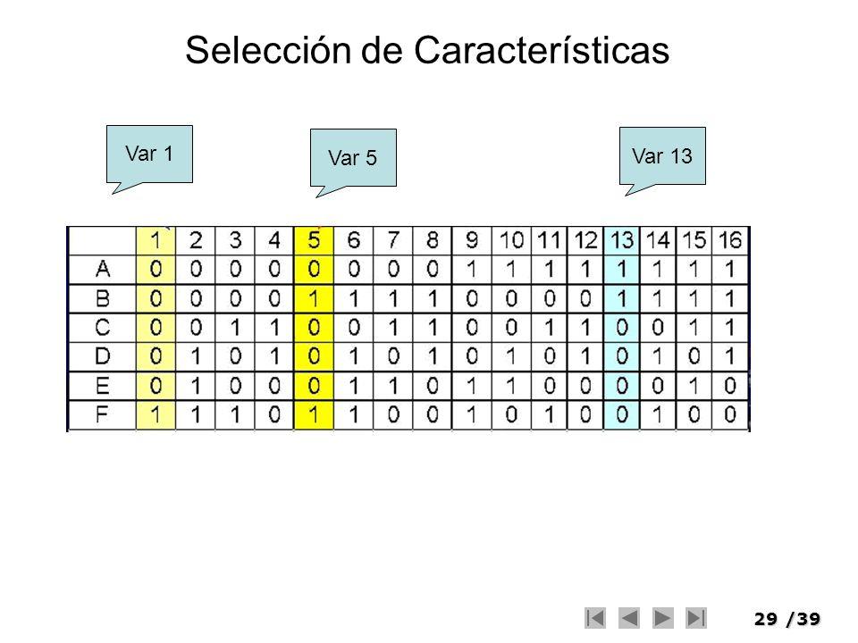 29/39 Selección de Características Var 1 Var 5 Var 13