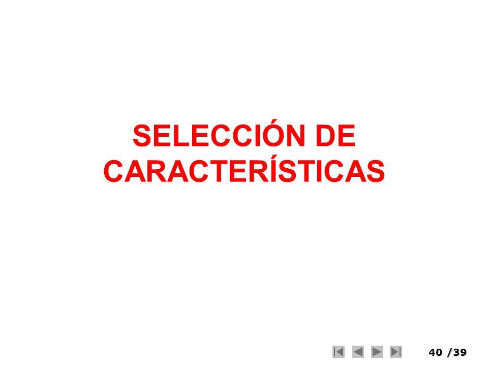 40/39 SELECCIÓN DE CARACTERÍSTICAS