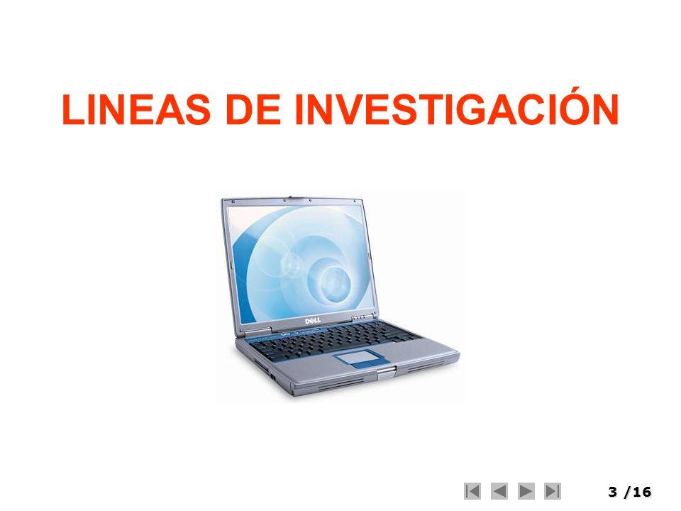 3/16 LINEAS DE INVESTIGACIÓN