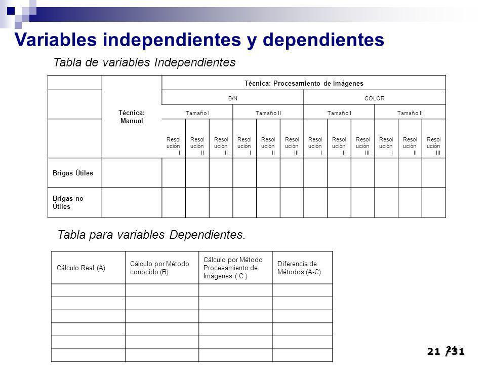 21/31 21 Variables independientes y dependientes Técnica: Manual Técnica: Procesamiento de Imágenes B/NCOLOR Tamaño ITamaño IITamaño ITamaño II Resol