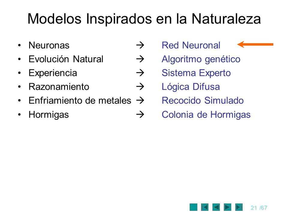 21/67 Modelos Inspirados en la Naturaleza Neuronas Red Neuronal Evolución Natural Algoritmo genético Experiencia Sistema Experto Razonamiento Lógica D
